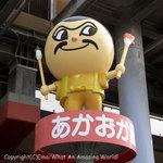 2009kochi_003.jpg