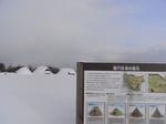 20110129aomori_0010.jpg