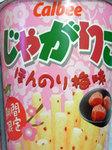 honnnori_ume2009_01.jpg